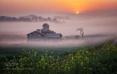 Sunrise on the farm by c1113 #Landscapes #Landscapephotography #Nature #Travel #photography #pictureoftheday #photooftheday #photooftheweek #trending #trendingnow #picoftheday #picoftheweek