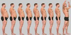 The only Endomorph diet and training guide that you will ever need.