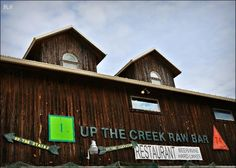 """We enjoy """"Up the Creek"""" raw bar. Excellent menu, good craft beers, and it's pet friendly. Our dog Gator gives it two paws up!"""