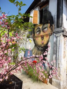 Blossoms and street art in Penang, Malaysia. The artist is Antanas Dubra from Vilnius, Lithuania. The wistful portrait is a caricature of Dubra missing his faraway homeland.    STREETsmART319