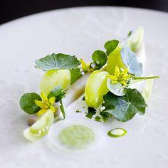 #mackerel and green #tomatoes dish by ronnyemborg on signebirck's IG #plating #gastronomy