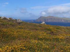 Western Ireland, Dingle headland