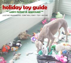 Weim tested and approved! Updated for 2015! http://justweimaraners.com/holiday-toy-guide/