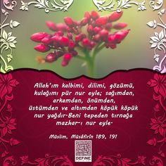 Hayırlı Cumalar… #hayırlıcumalar #hayirlicumalar #cuma #dua #pray #reca #af #yakarıs #hadis #ayet #hadisiserif