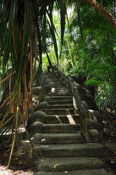 Jardim Botânico da Amazônia, Belém, Brazil (by Macapuna).