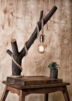 ağaç dalı, halat ve edison lambadan oluşan kütük saksılı lambader