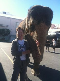 I present for your consideration, Benedict Cumberbatch and an elephant. You're welcome.