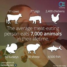 Why... Why not I return the question? Life is life – whether in a cow, pig, cat, or dog or man... I choose Compassion & Life
