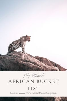 There you have my ultimate African Bucket List. There are a lot of places to travel to and a lot of different experiences that I hope to partake in one day. Kingdom Of Kongo, Places To Travel, Places To Visit, Mount Kenya, Gorilla Trekking, Valley Of The Kings, Nature Reserve, Africa Travel, Africa