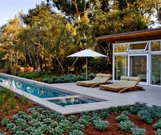 lap pool with pool house