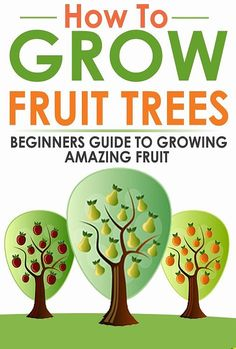 How to Grow Fruit Trees - Beginners Guide to Growing Amazing Fruit by Robert Walden Veg Garden, Fruit Garden, Garden Trees, Edible Garden, Garden Plants, Indoor Garden, Hydroponic Gardening, Container Gardening, Organic Gardening