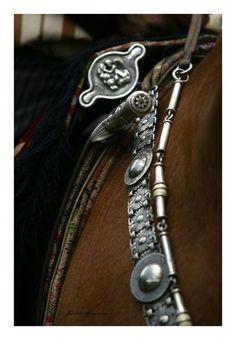 Dia Nacional del Gaucho - Chivilcoy - Foto Javier Mosquera Horse Gear, Horse Tack, Horse Adventure, Equestrian Chic, Cowboy Gear, Tack Sets, Rio Grande Do Sul, Baroque Fashion, Saddle Pads