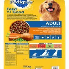 best dog food brand reviews - what is the best food for dogs? pet