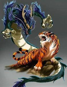 Tigre y dragón – unknown animals Dragon Tiger Tattoo, Tiger Dragon, Mythical Creatures Art, Fantasy Creatures, Fantasy Dragon, Fantasy Art, Le Joker Batman, Japanese Tattoo Art, Dragon Artwork
