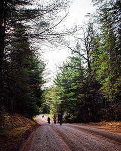 Chequamegon's Dead Horse Run Trail — Bike Overnights