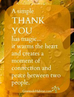 Thank you. www.GratitudeHabitat.com #gratitude-quote #grateful