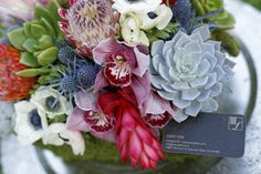 Succulent and tropical flower arrangement with a rustic twist. Photography: Nathaniel Tufts