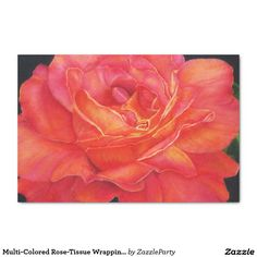 """Multi-Colored Rose-Tissue Wrapping Paper 10"""" X 15"""" Tissue Paper   http://www.zazzle.com/multi_colored_rose_tissue_wrapping_paper_digiwraptissuepaper-256736744707606596?rf=238588924226571373"""