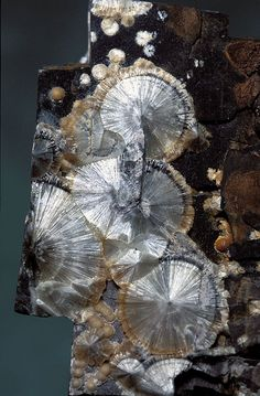 Wavellite / Faerie Magic in Minerals. (Aluminium phosphate wavellite, High Down Quarry, Filleigh, North Devon, England. Discovered by John Hill late 18th c and named for William Wavell, a local physician and mineral collector.) // photo by Dave Green