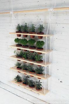 hanging garden DIY
