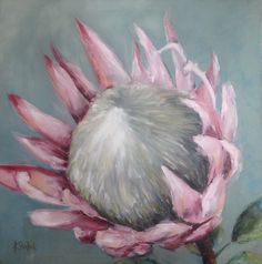 """Protea #495"" daily painting by Heidi Shedlock. Visit the blog and follow links to the online store"
