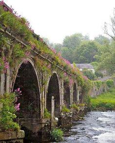 Country Kilkenny, Ireland
