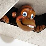 Monkey Peek-a-boo Tile