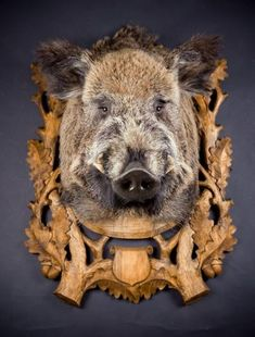 Home Theater Room Design, Home Theater Rooms, Animal Sculptures, Lion Sculpture, Taxidermy Display, Hunting Stuff, Hunter S, Praise And Worship, Black Forest
