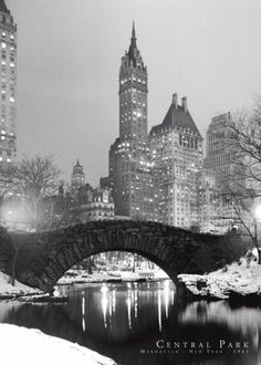 Central park! New York City at Christmas time. It's my dream to be there for christmas