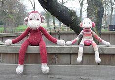monkey jacobus