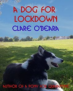 A Dog For Lockdown by Clare O'Beara Positive Thinking Stories, Children's Books, Books To Read, Man Next Door, Recommended Books, Environmental Issues, Book Reviews, Book Recommendations, Short Stories