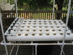 Learn how to grow plants year-round by using a soil-less hydroponic system.