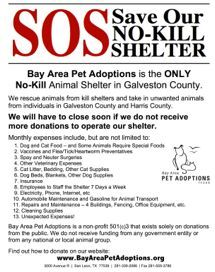 """Adopt DONATE Volunteer at Bay Area Pet Adoptions/SPCA ~ Hundreds of dogs' and cats' lives depend on us -""""If we close down, that's 2-300 cats and dogs that we aren't going to be able to rescue."""" Individuals who would like to help support this no-kill shelter can make a tax-deductible donation to help  feed, house and care for the homeless animals in this area. DONATIONS:http://bayareapetadoptions.org/donate.html I gave PLEASE GIVE WHAT YOU CAN TO KEEP THEM OPEN!"""