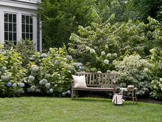 Hydrangeas and dogwoods backed by doublefile viburnum make a showy border year-round. | Photo: John Gruen