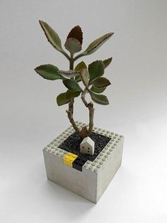Flower shape blocks Cement building blocks can be assembled above To create their own unique style Put the plant, put small stationery all right, the ...