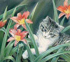 Gilding the Lilies – Cat by Susan Bourdet