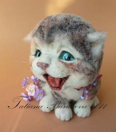 laughing kitty!  Tatiana Barakova - «IMG_0826.jpg» on Yandex
