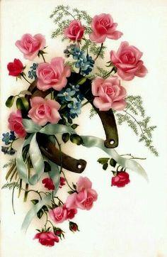Era dura con un listo celeste y coqueta rosas