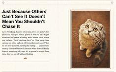 Cat's advice 8
