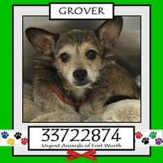 GROVER located in Fort Worth, TX, to be destroyed 11/19/2016