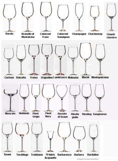 types of wine glasses and their uses | About Glass - ItalyHomeMade