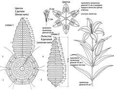 Схема вязания крючком цветка - белой лилии