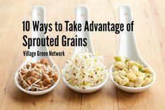 What are 10 Ways to Take Advantage of Sprouted Grains? / http://villagegreennetwork.com/10-ways-take-advantage-sprouted-grains/