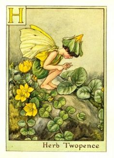 Herb Twopence Fairy from the Flower Fairy Alphabet by Cicely Mary Barker