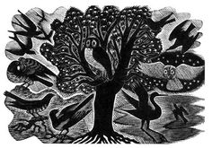 Wood engraving by Eric Ravilious from Gilbert White's 'The Natural History of Selborne', 1938 (Nonesuch Press) Art And Illustration, Botanical Illustration, Royal Academy Of Arts, Scratchboard, Art Prints For Sale, Wood Engraving, Affordable Art, Linocut Prints, Gravure
