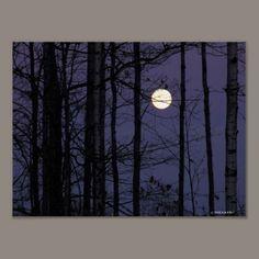 Northwoods Moon Print.