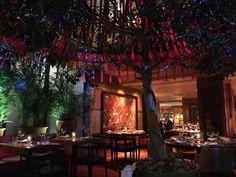 Masala Grill, London - Restaurant Reviews, Phone Number & Photos - TripAdvisor Engagement Decorations, London Restaurants, Best Dining, London England, Trip Advisor, Grilling, Interiors, Indian, Number