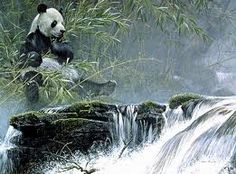 Robert Bateman - Giant Panda - Search Gallery One for Bateman, Robert limited edition prints, giclee canvases and original paintings by internationally-known artists Bear Paintings, Wildlife Paintings, Nature Paintings, Wildlife Art, Original Paintings, Art And Illustration, Batman, Canadian Artists, Art World