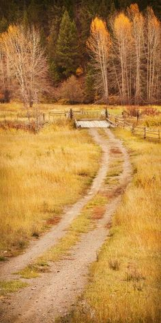path in autumn field - Interior British Columbia - reminds me of Wisconsin Country Life, Country Roads, Back Road, Felder, Take Me Home, The Ranch, Mellow Yellow, Farm Life, Belle Photo