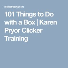 101 Things to Do with a Box | Karen Pryor Clicker Training